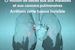 air-pollution-infographics-lung-fr